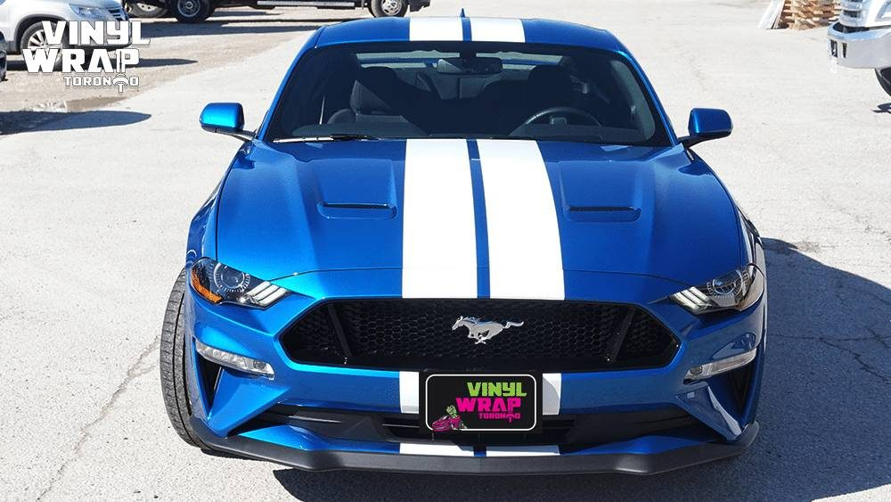 Ford Mustang California Special Racing Stripes - Vinyl Stripes - Avery and 3M - Branding Centres